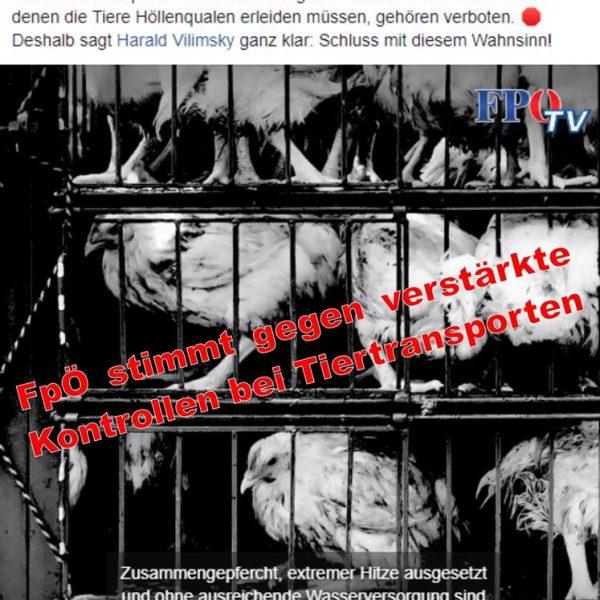 Die FPÖ und der Tierschutz