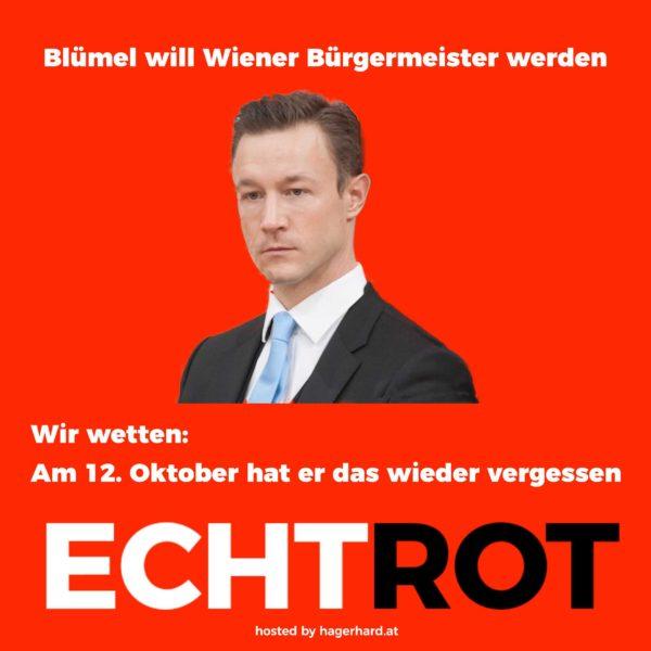 Blümel will Bürgermeister werden