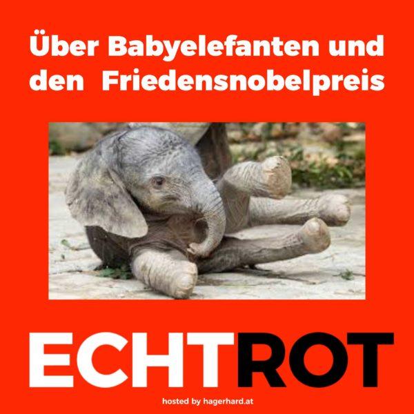 Über Babyelefanten und den Friedensnobelpreis